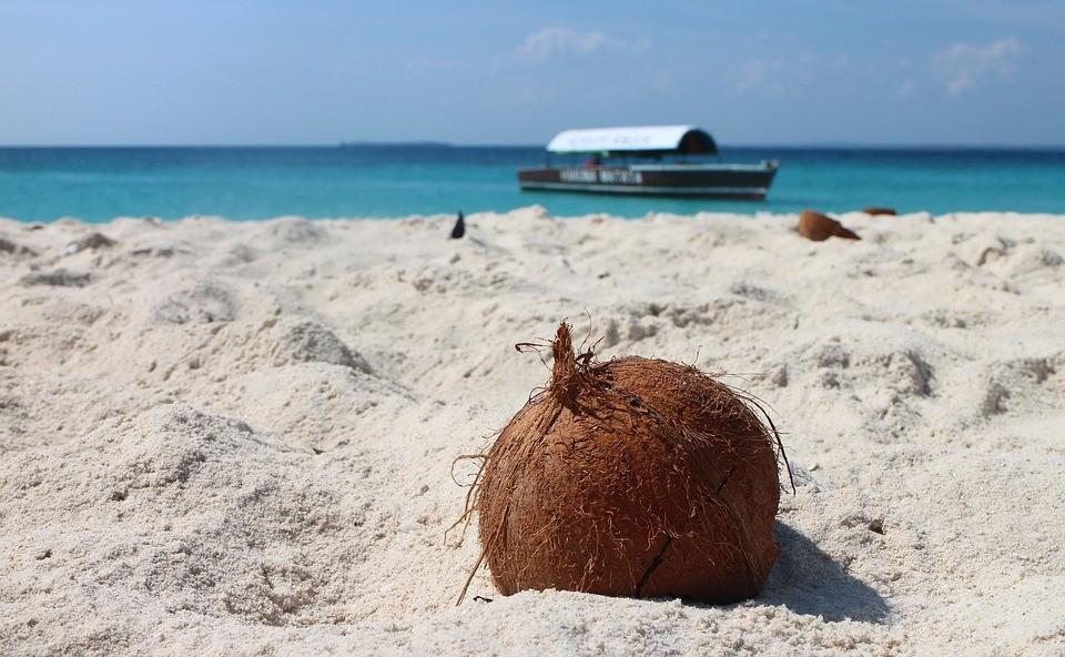 Zanzibar vakantietips