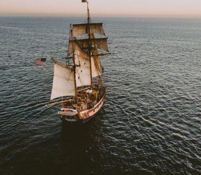 pirate bay alternatief